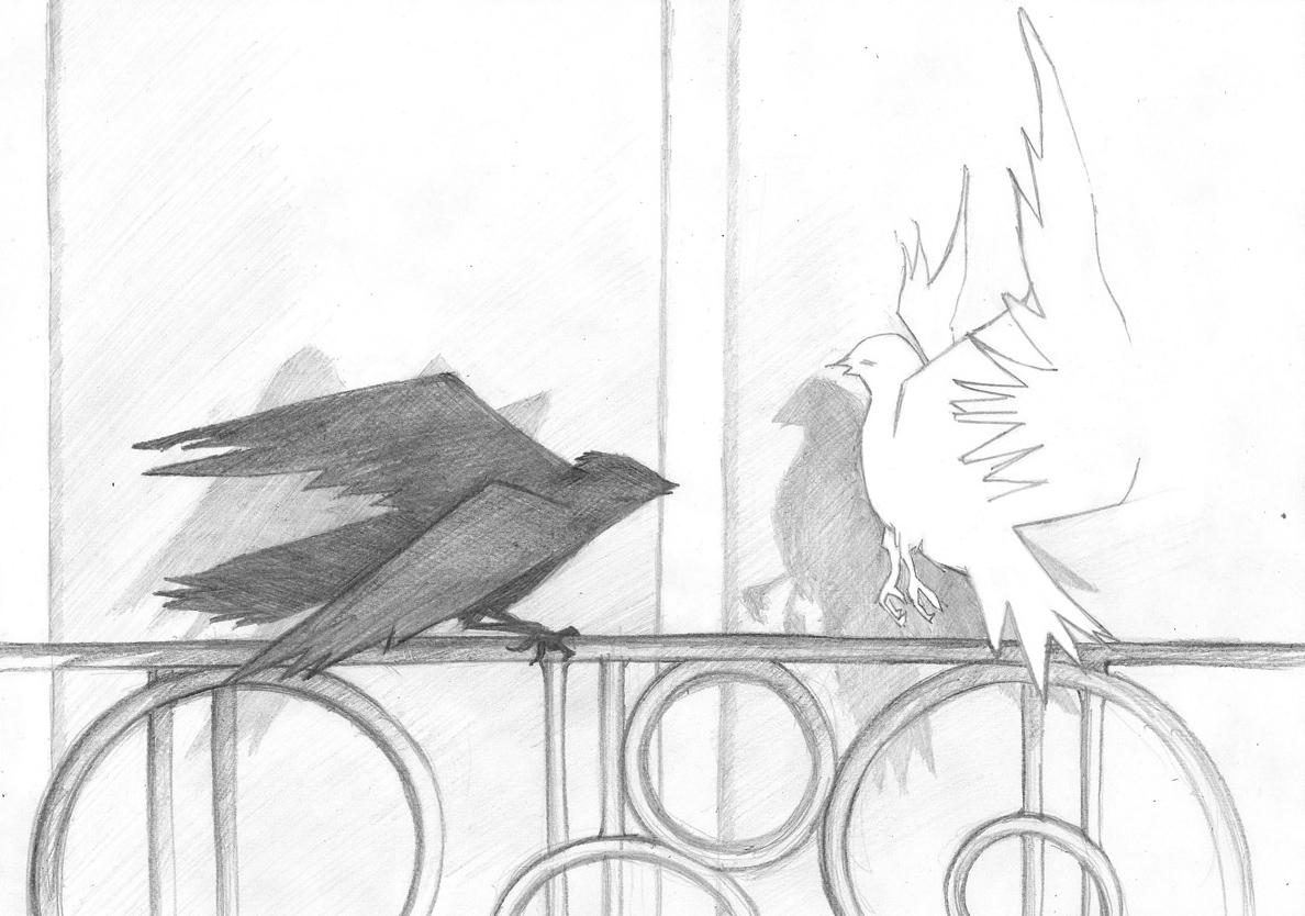 06-colombe-et-vampire-damien-pons