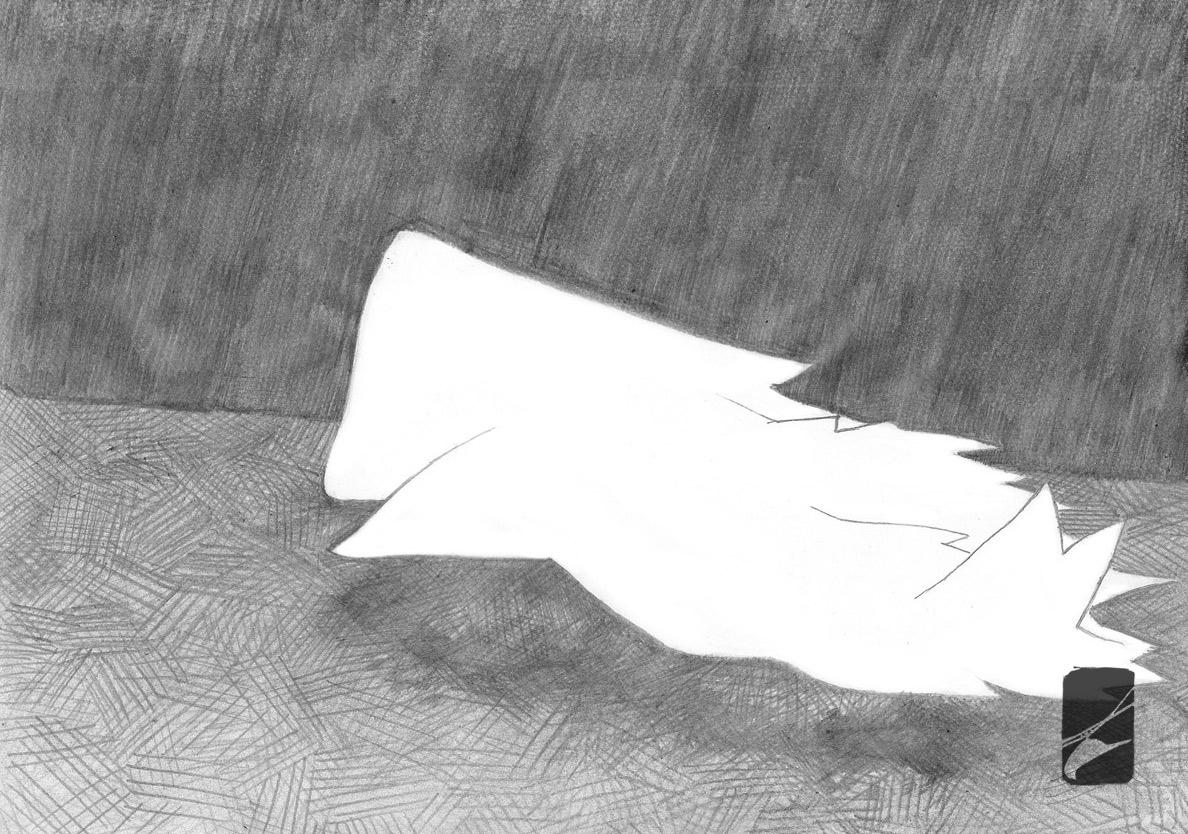 17-colombe-et-vampire-damien-pons